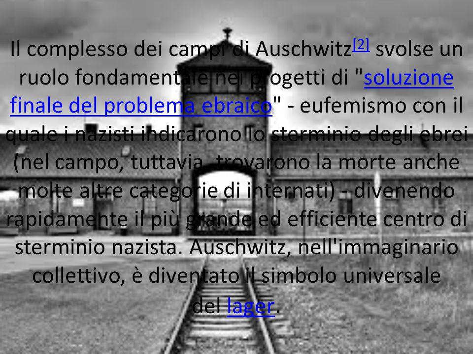 Il complesso dei campi di Auschwitz[2] svolse un ruolo fondamentale nei progetti di soluzione finale del problema ebraico - eufemismo con il quale i nazisti indicarono lo sterminio degli ebrei (nel campo, tuttavia, trovarono la morte anche molte altre categorie di internati) - divenendo rapidamente il più grande ed efficiente centro di sterminio nazista.
